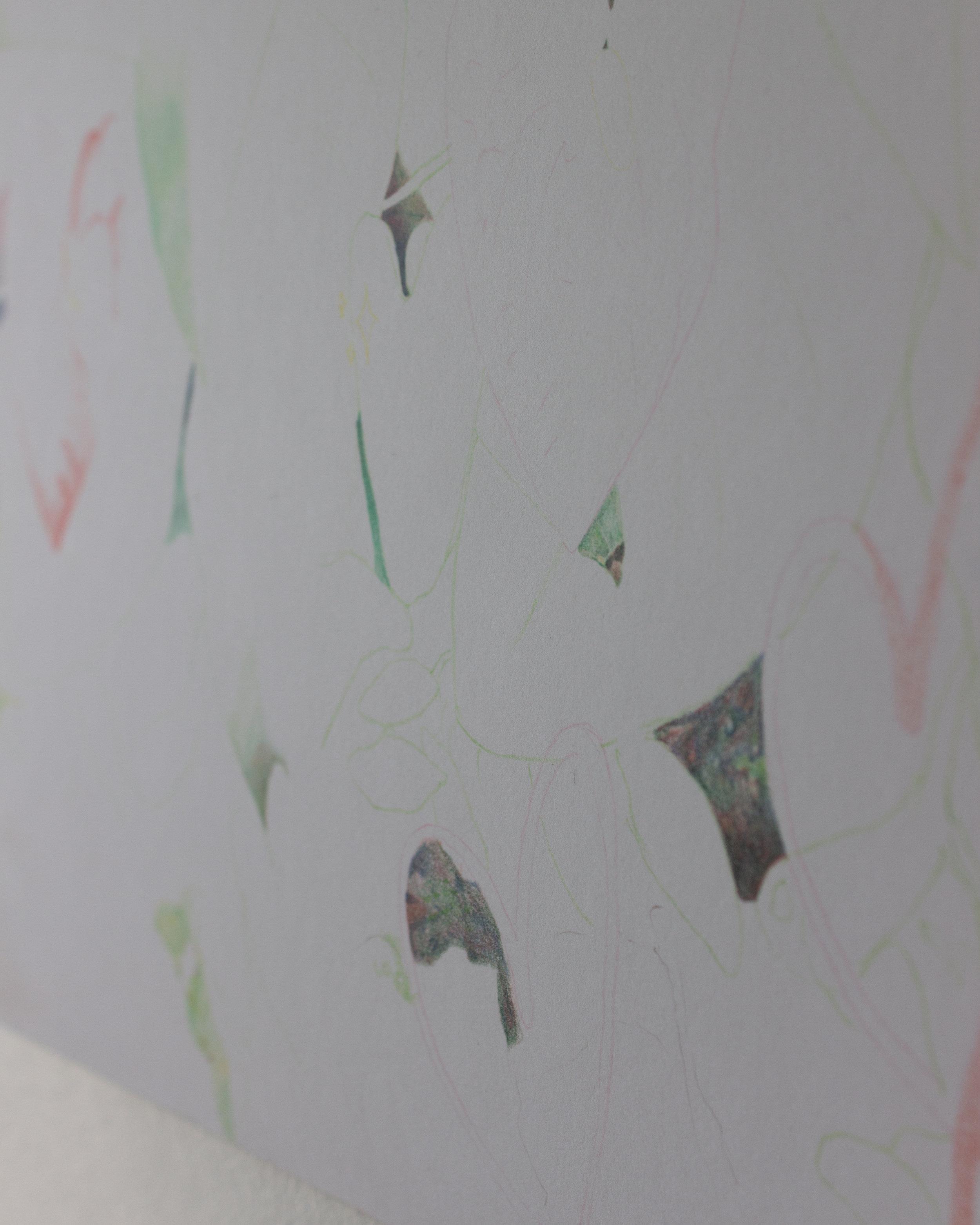 Alejandro Jiménez-Flores ,  a longing —a becoming , 2018, color pencil on paper, 14 x 19 in. (Detail)