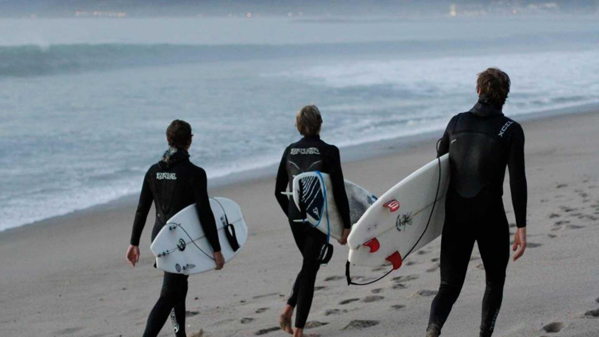 - SURFer