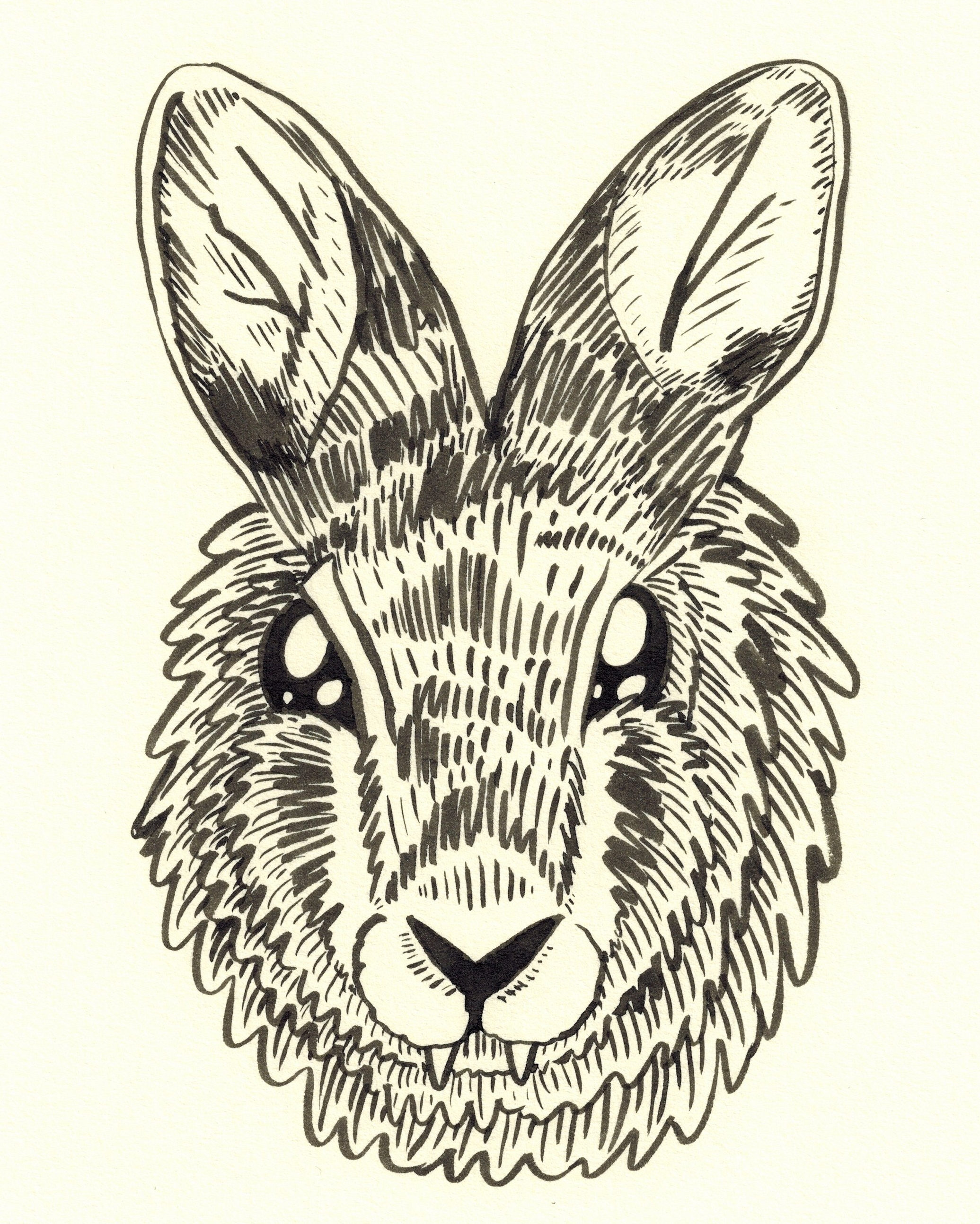 Eastern Cottontail Vampire, ink on paper, 10 x 8 inches, 2018