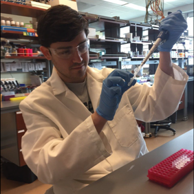 Patrick Blatt - B.S. in Biology from SUNY Geneseopblatt@albany.eduPatrick Blatt is a graduate student in the MCDN program and joined the Rangan lab in 2015. He completed his Bachelor's Degree in Biology at SUNY Geneseo. His research focuses mRNA control and surveillance mechanisms in the germ line. Patrick enjoys workers' rights, reading papers and the NBA.