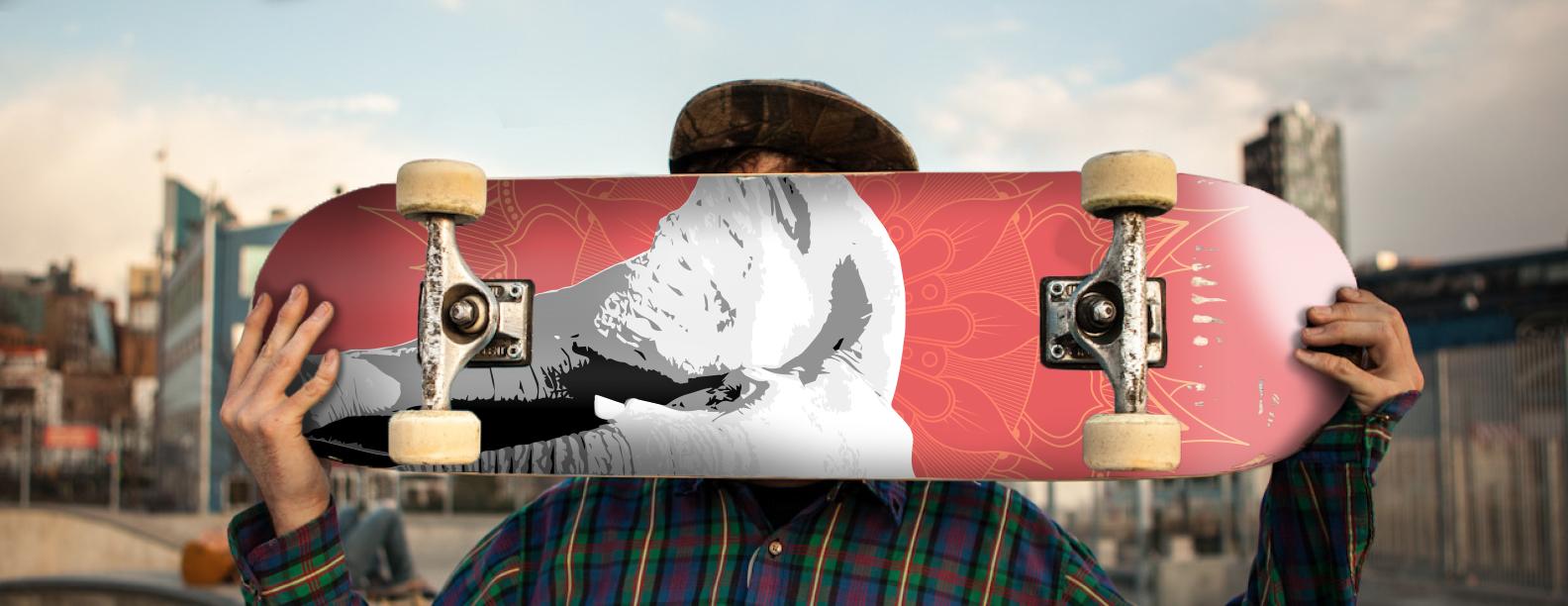skateboard_image_replace.jpg
