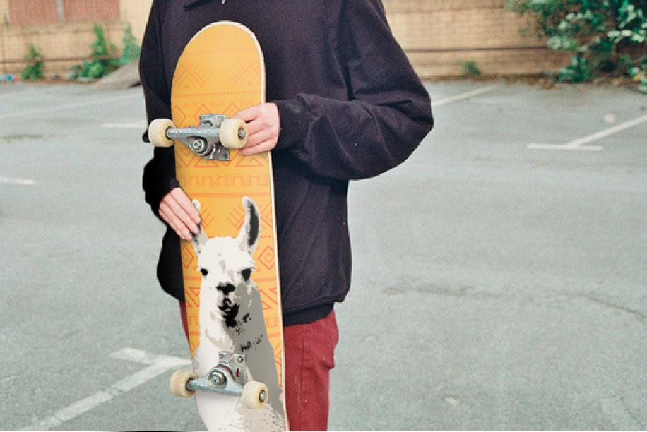 skateboard_image_replace3.jpg