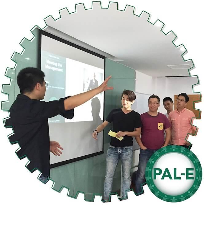 Professional Agile Leadership - Essentials -