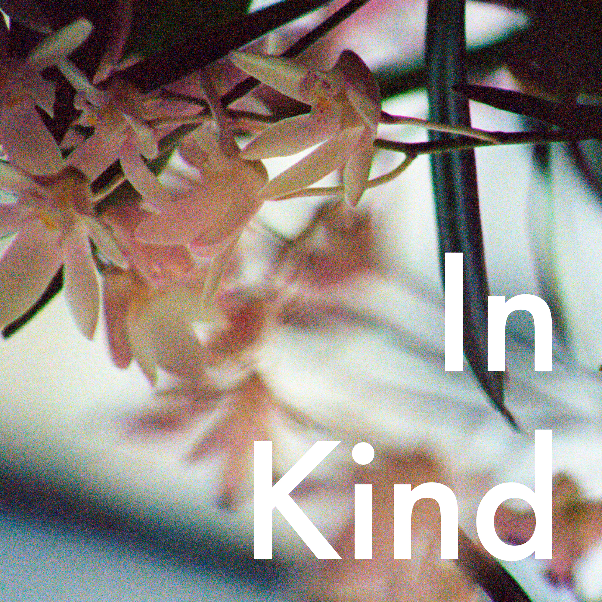 InKindPodcastCover.jpg