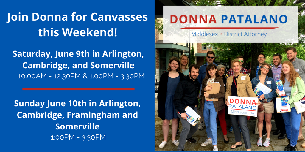 Join Donna for Canvasses this Weekend! (1).png