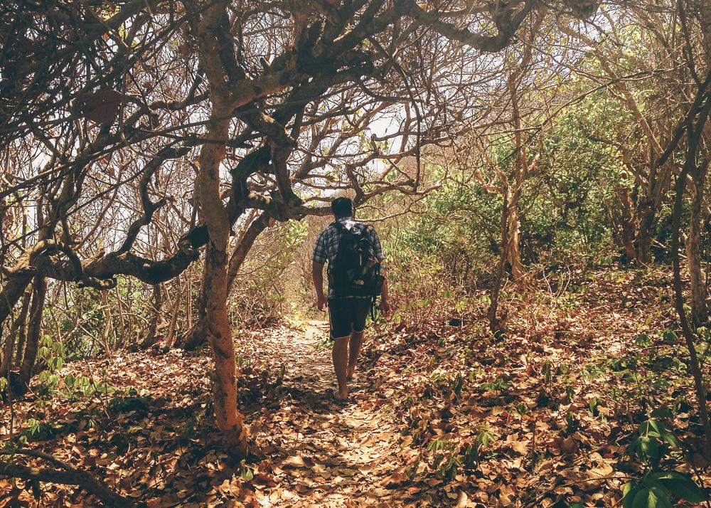 Hiking in Sayulita