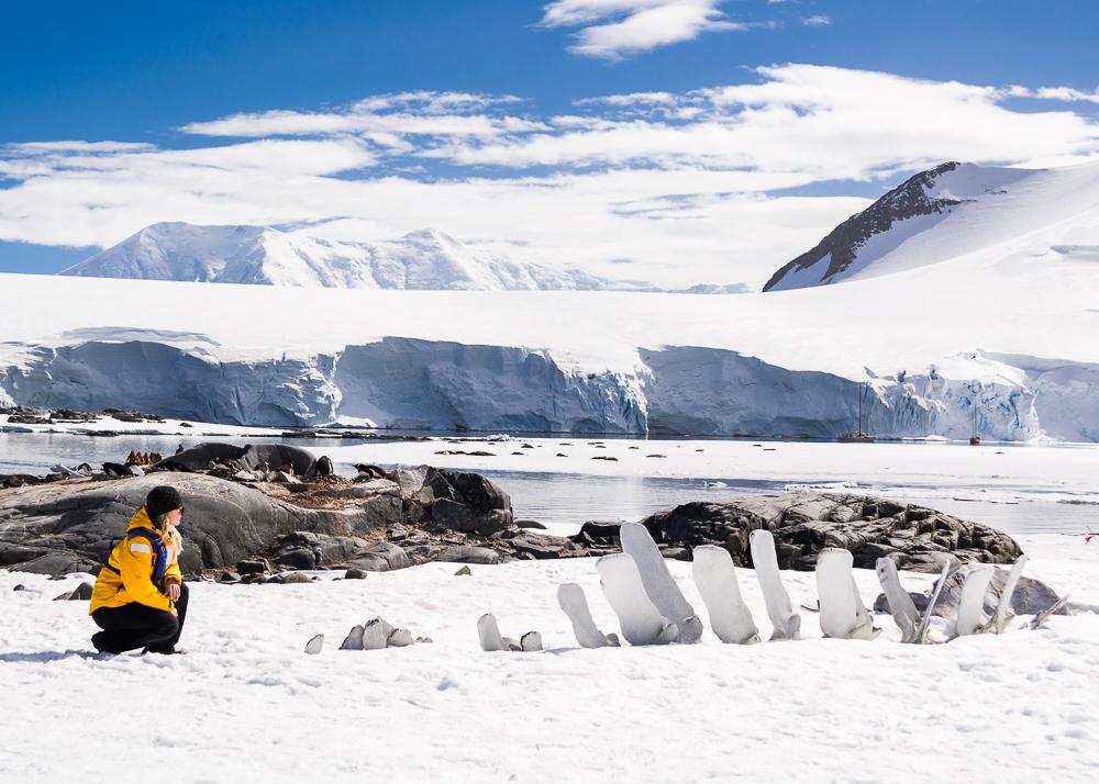 antarcticablog-45.jpg