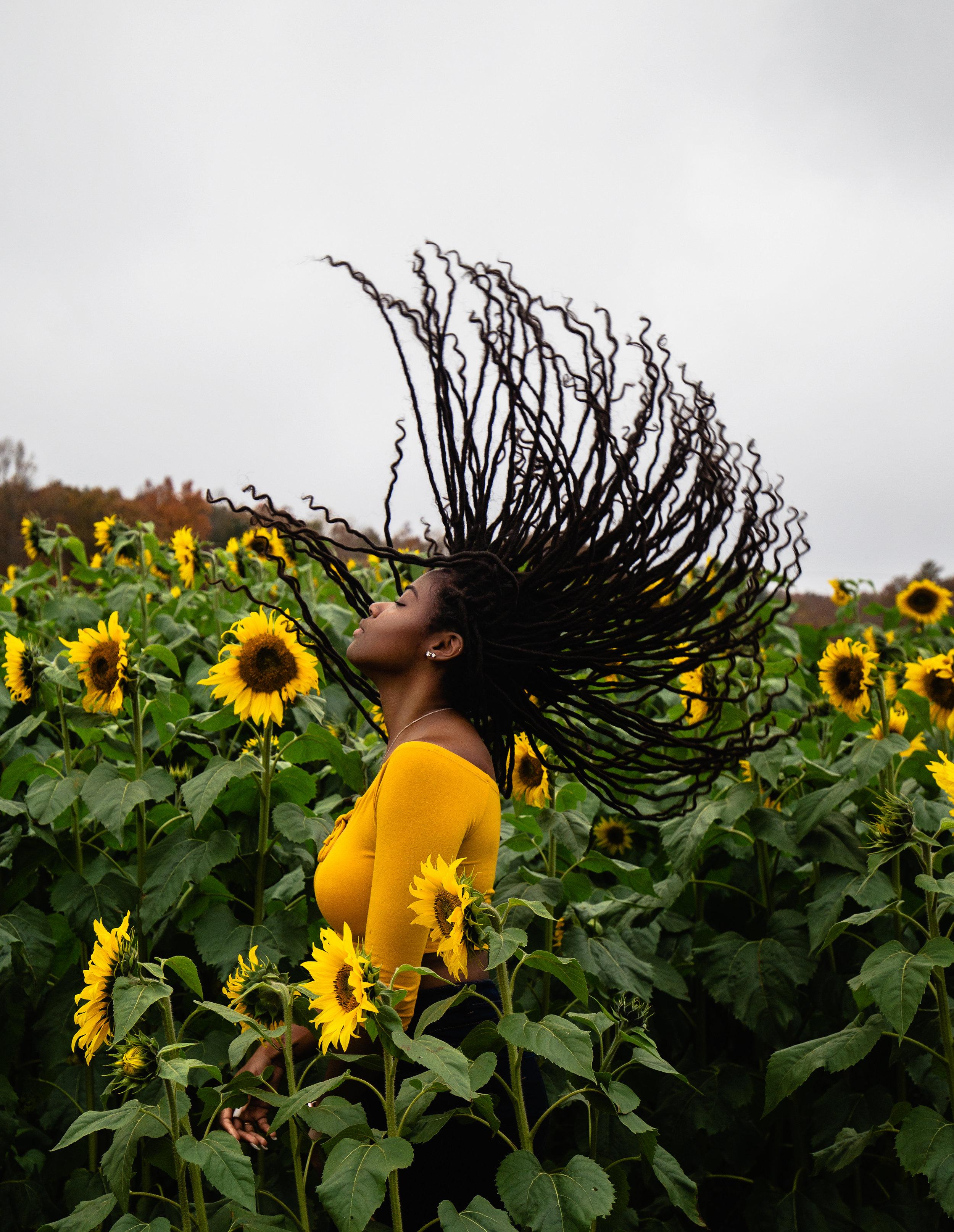 Sunflower-Field-83_1.jpg