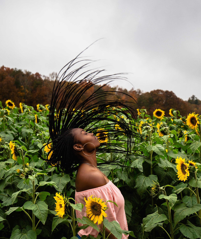 Sunflower-Field-52-2.jpg