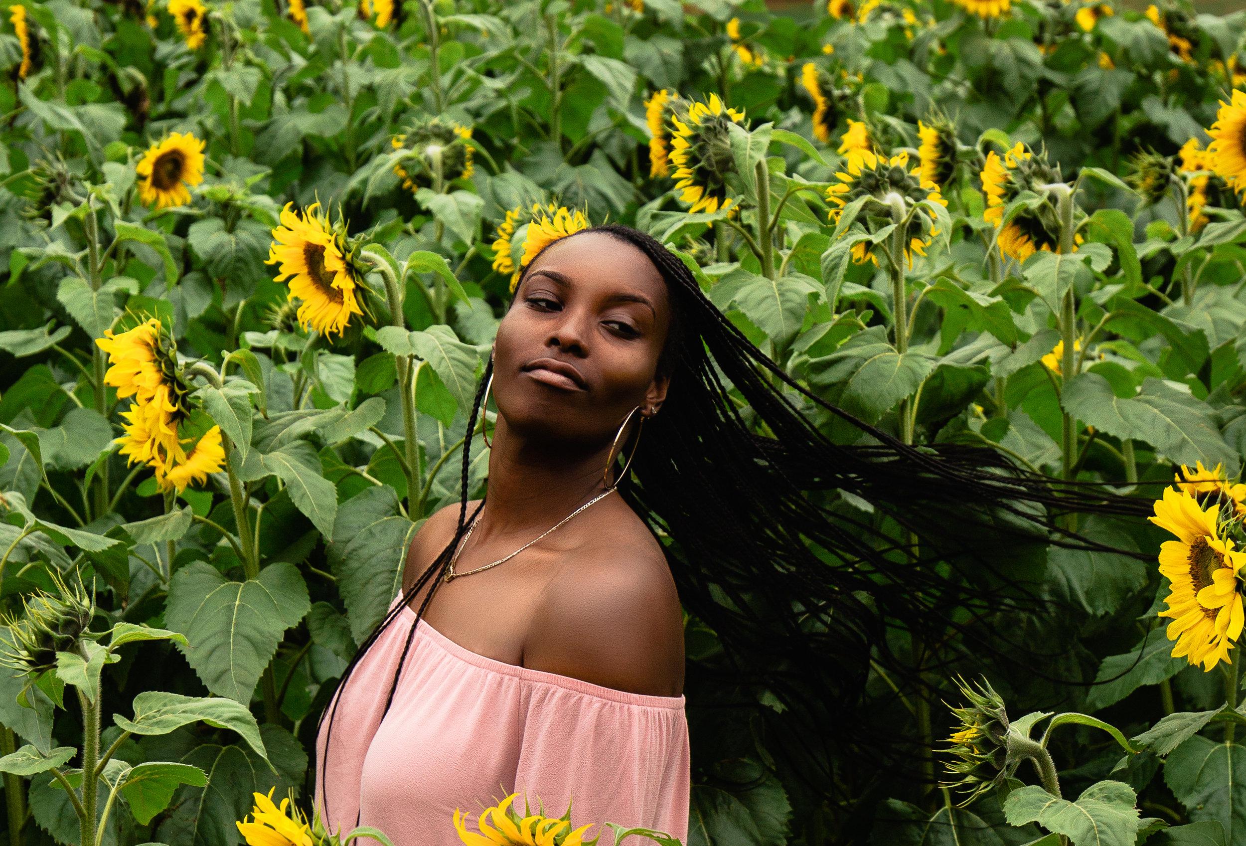 Sunflower-Field-62.jpg