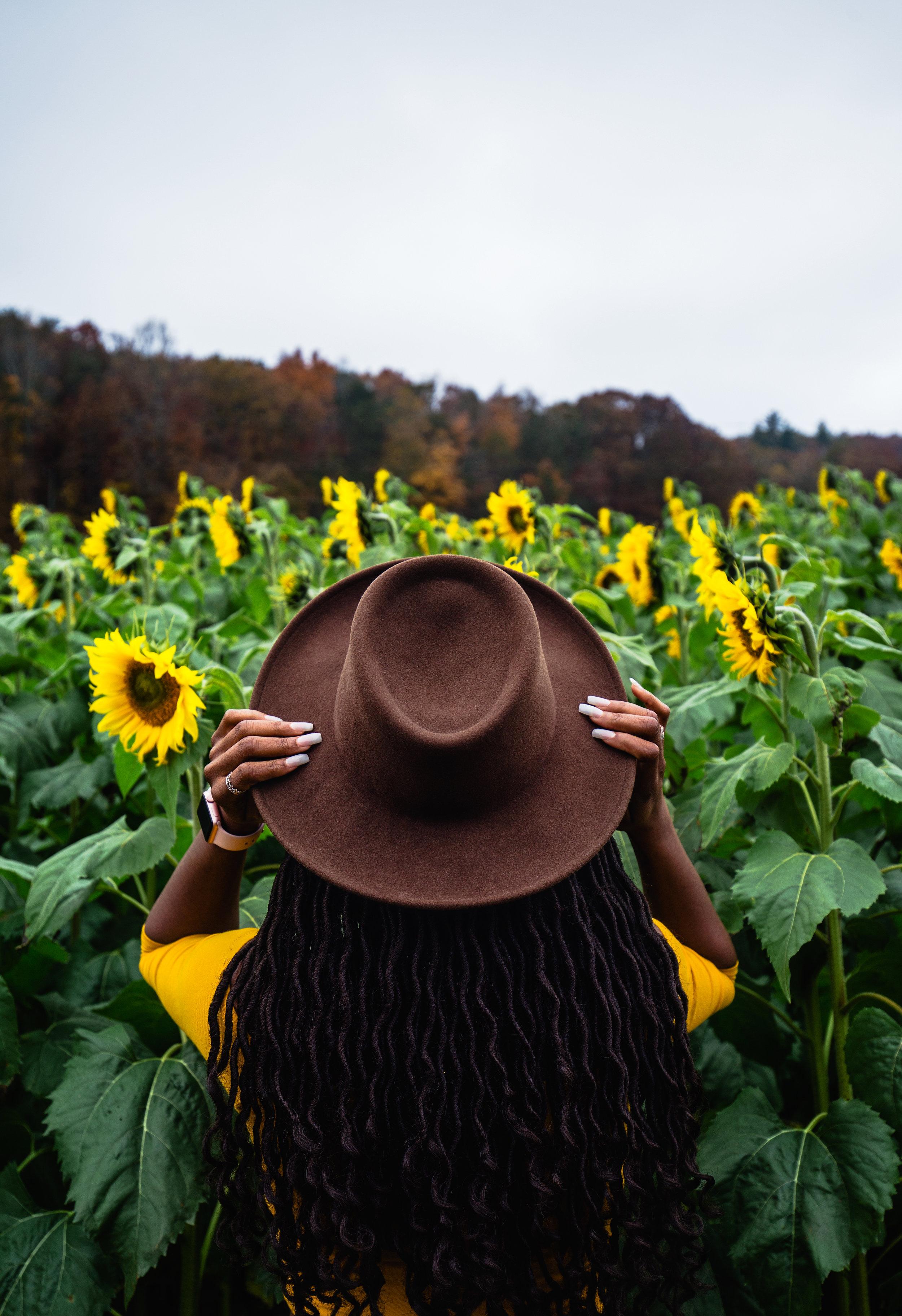 Sunflower-Field-157.jpg