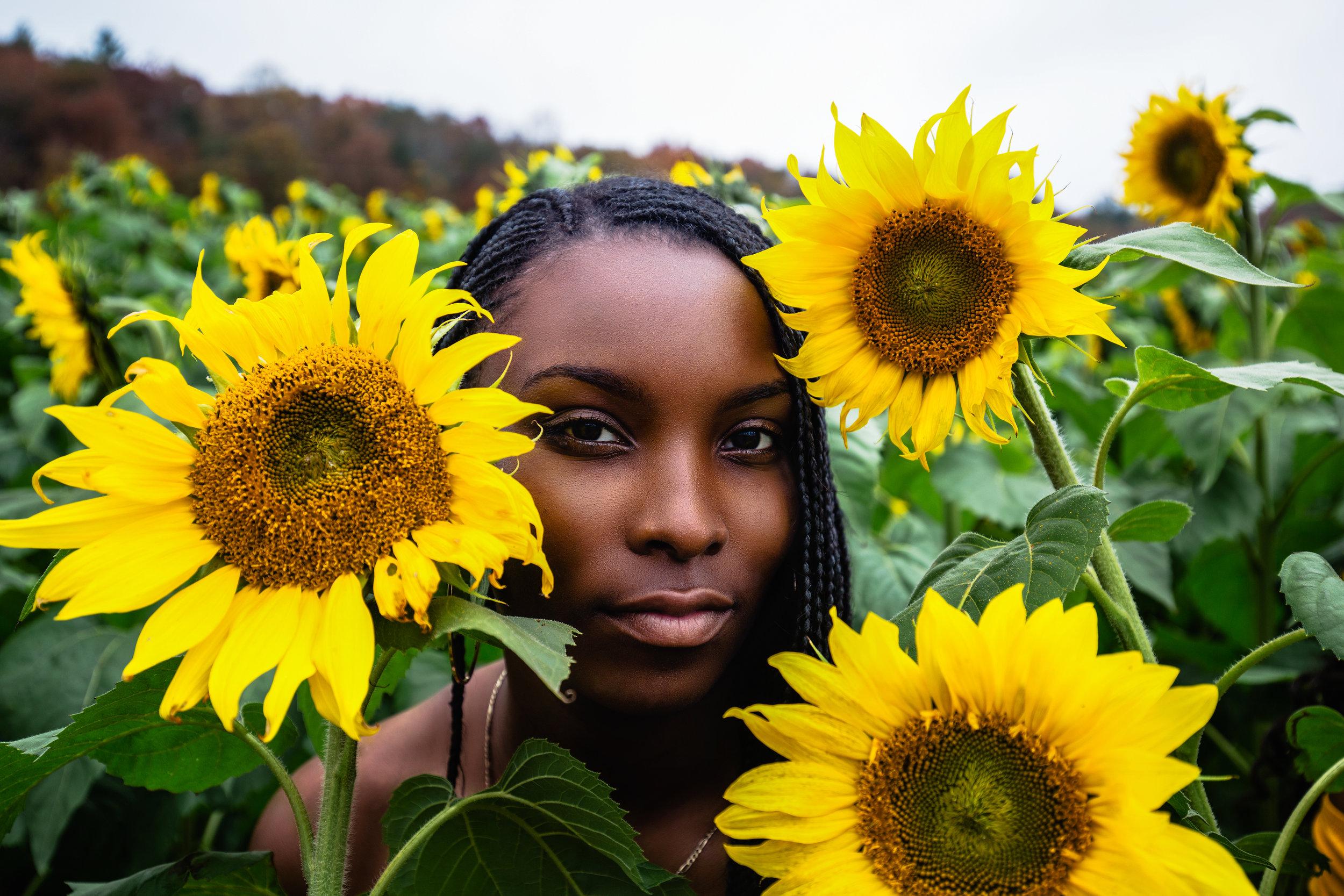 Sunflower-Field-139.jpg
