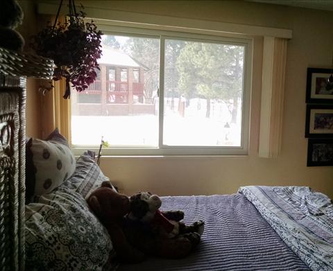 Master bedroom & window.jpg