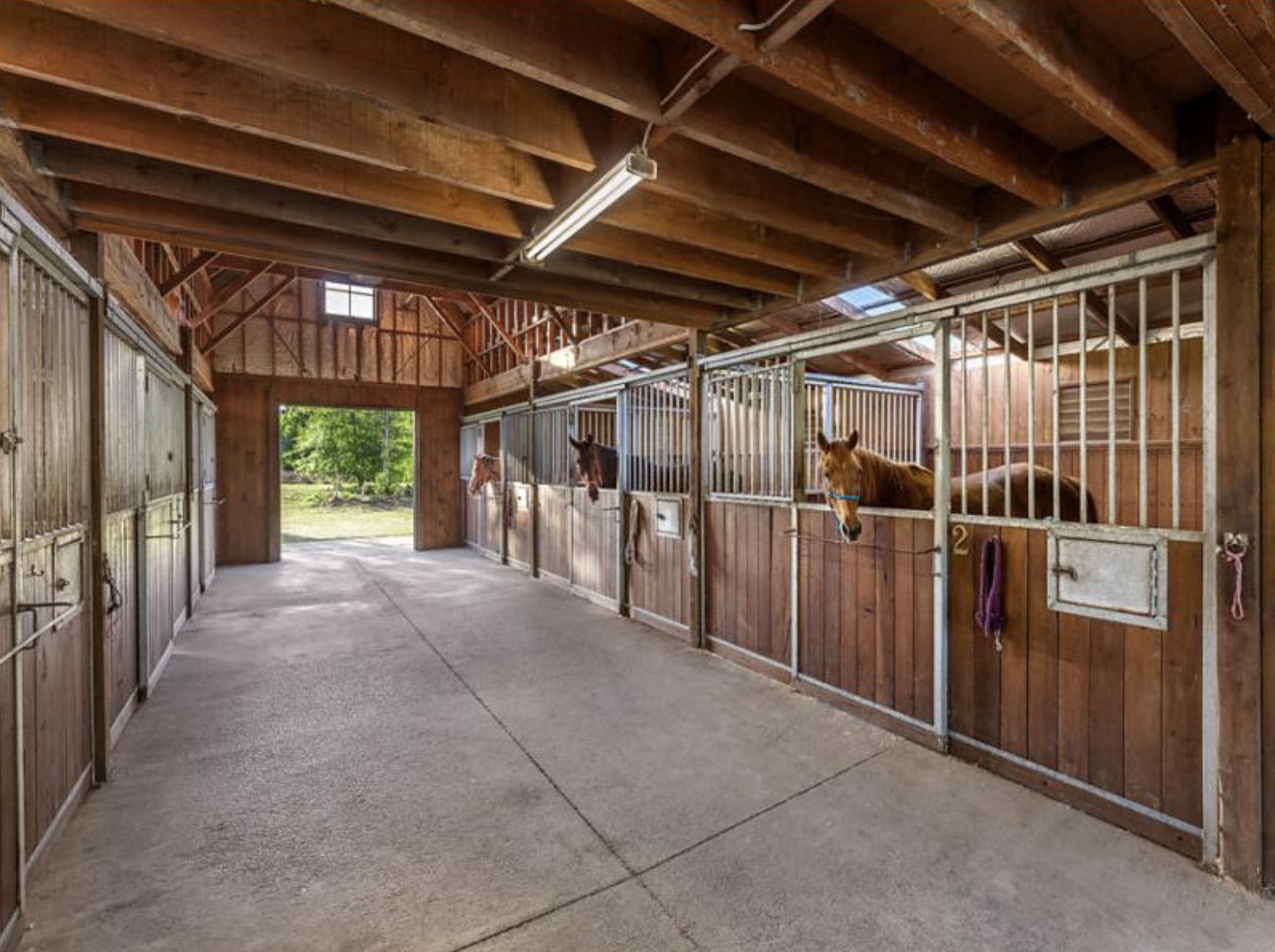 The Stables - Our stable block has been created to give all horses the royal treatment, regardless of their size. Our large boxes (4x6m) mean that horses who are here for rehabilitation will have more than enough space to recover. The wash bay also has both hot and cold wash options, perfect for Australian winters and summers. But it's not all about the horses, we've also got a tea/coffee station, bathroom and tackroom for storage.