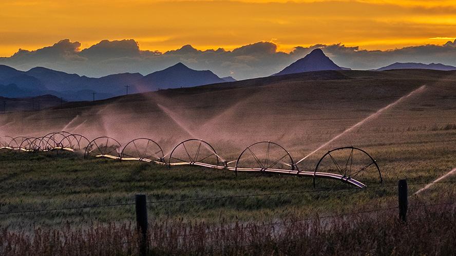 irrigation-farm-field.jpg