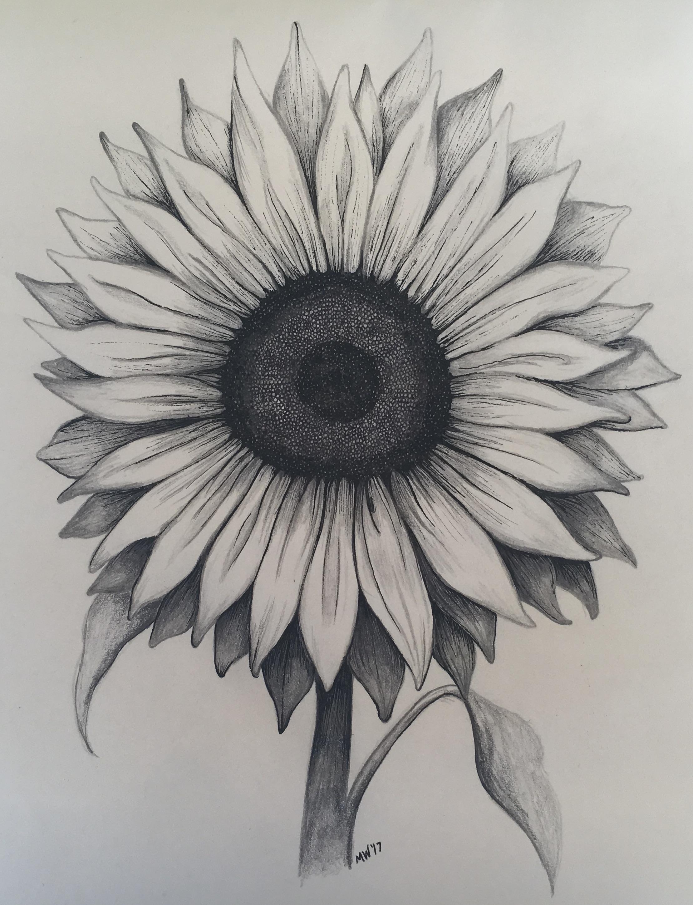 sunflower_art.JPG