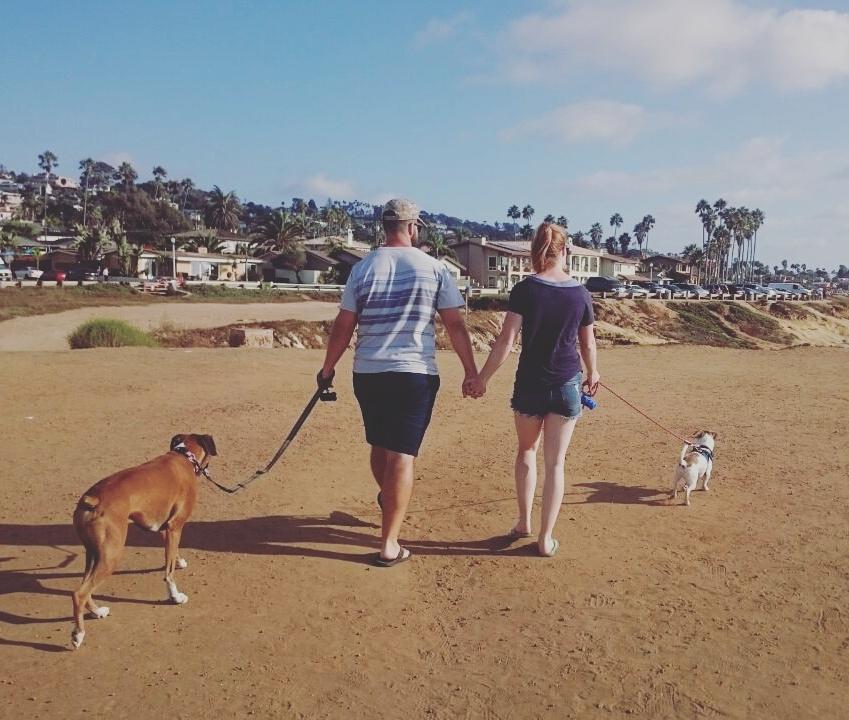 Puppy walks in San Diego - Sunset Cliffs.