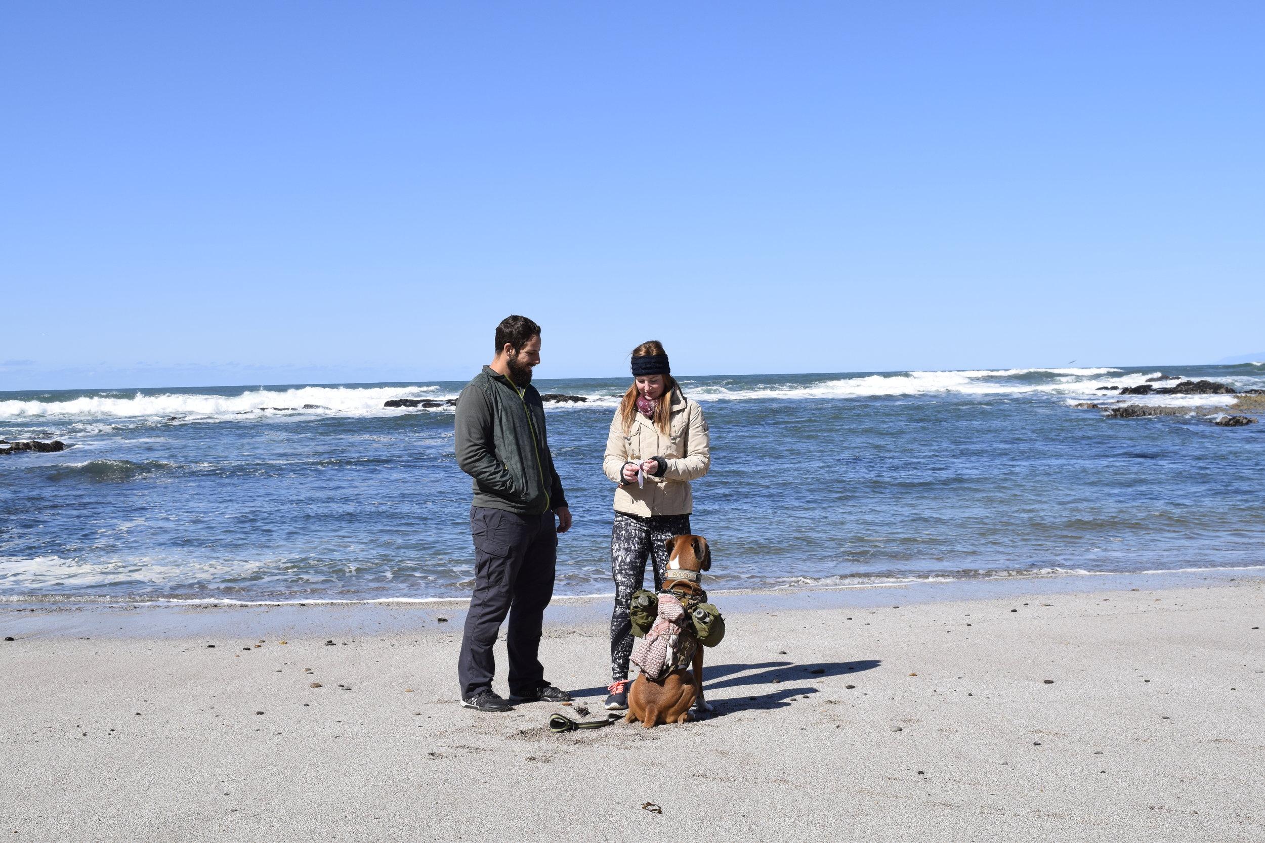 Proposal Morro Bay Febr. 24 II.JPG