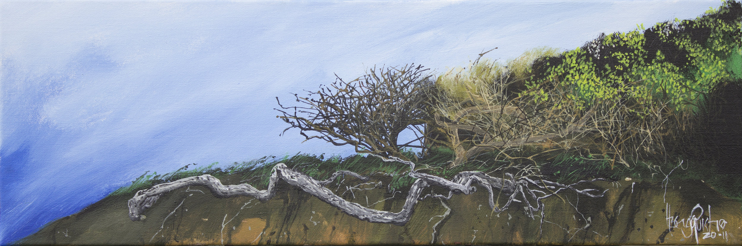 Torquay Clifftop