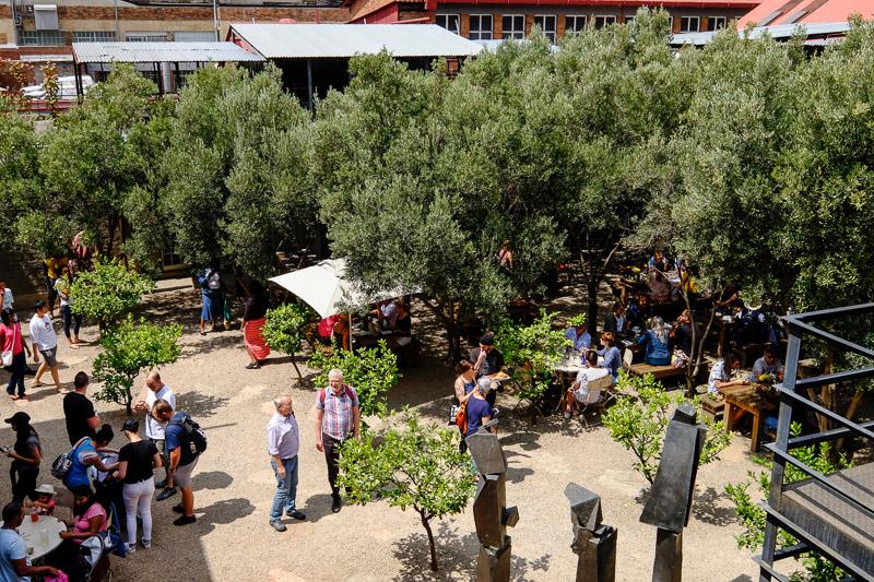 Olivenbaumgarten