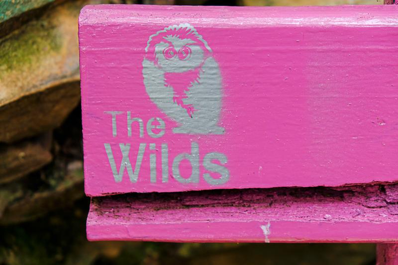 The Wilds_Abramowsky-16.jpg