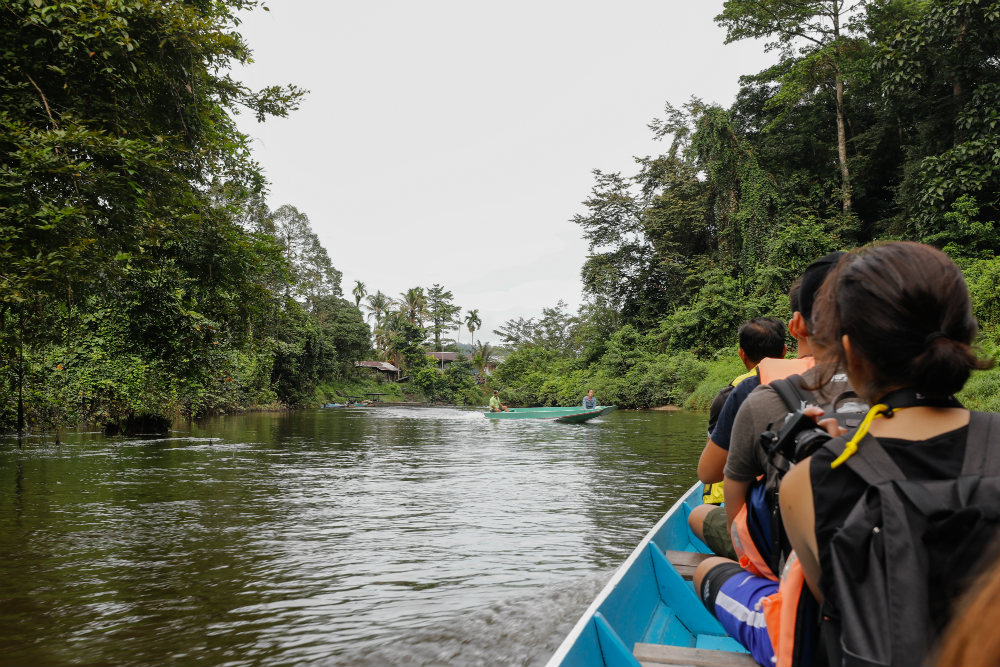 Part of the experience includes longboat rides into the national park.