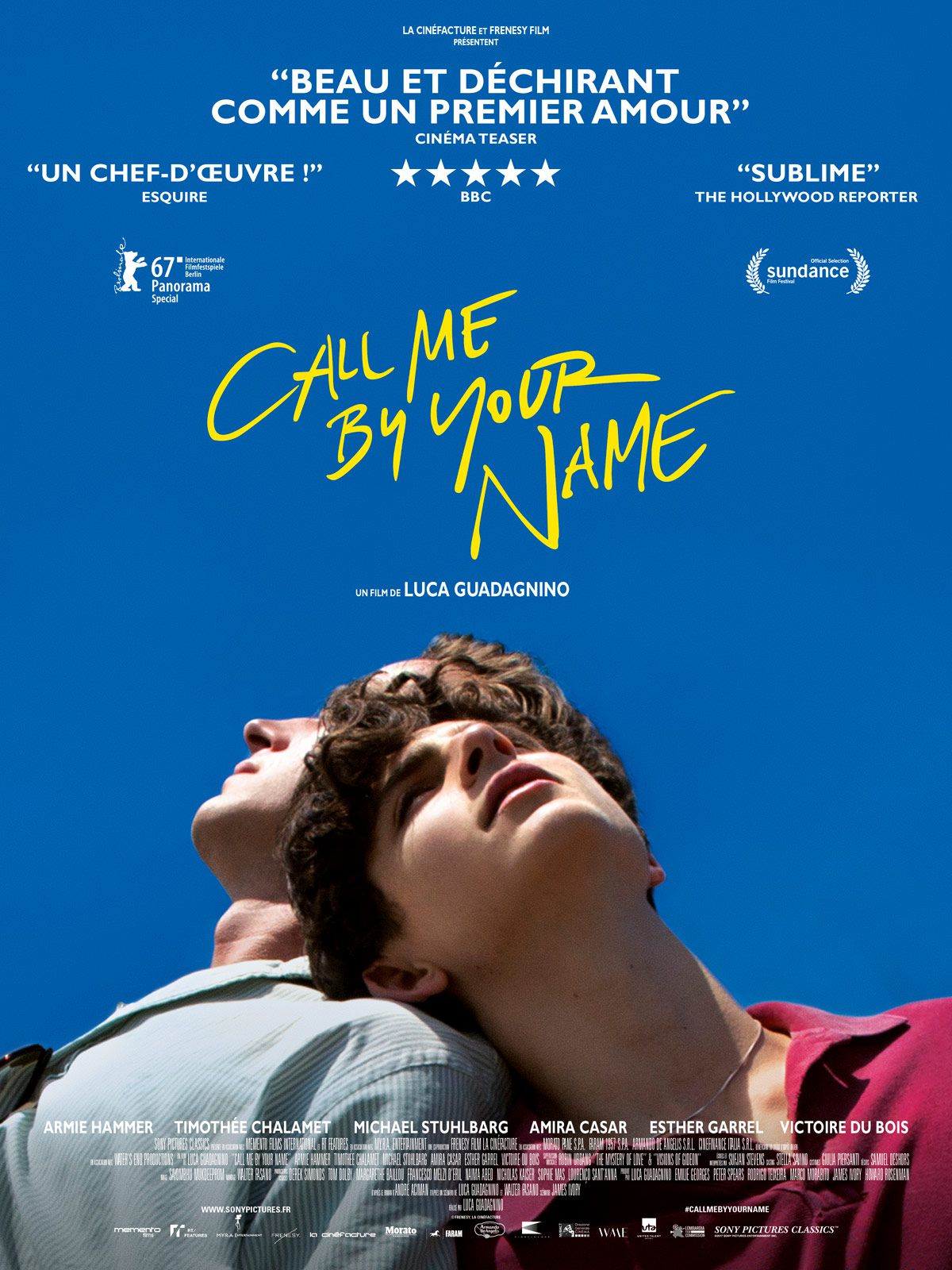 Call me by your name (2018) - de Luca Guadagnino