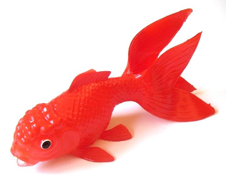 Fisch1_corr.jpg