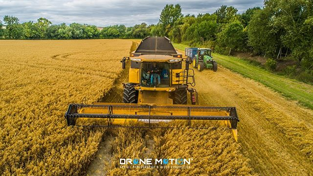 The harvest season continues to be strong for Hagbourne Farm Partners, who are based in West Hagbourne. As they see another good year for their crop. 🚜 . #Harvester #Field #Farm #Agriculture #Harvest #Crop #Plant #Grass #Soil #Plantation #Grassland #Barley #Tractor