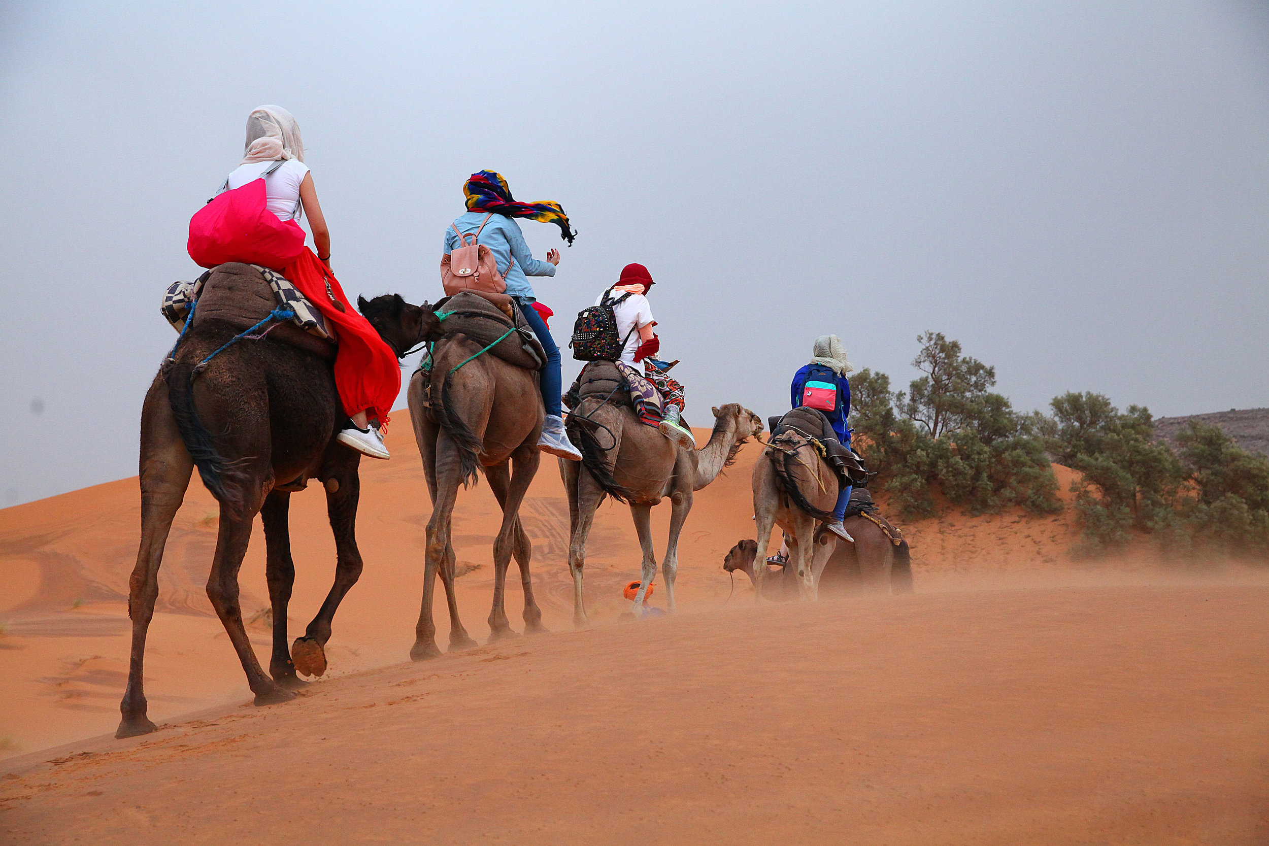 Private Tours around Morocco - Morocco Gnawa Tours