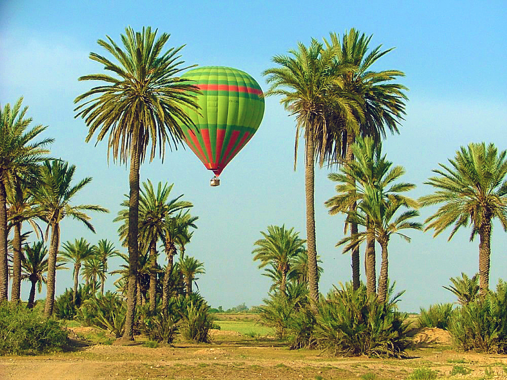 Day Trips and Activities around Marrakech - Morocco Gnawa Tours