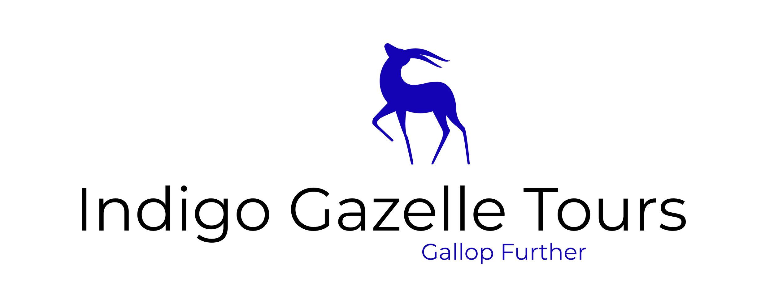 Indigo Gazelle Tours