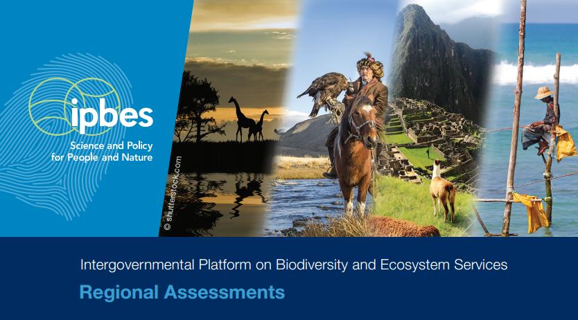 Regional Assessments Flyer Header.png