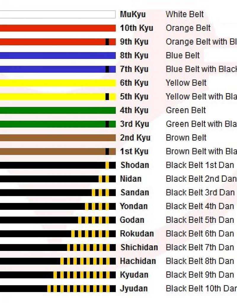 isami-premium-kyokushin-kyu-belt-with-full-name-em.jpg