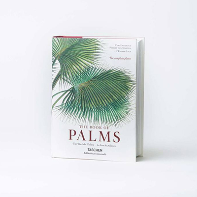 The book of Palms - von Martius - € 50 - Taschen
