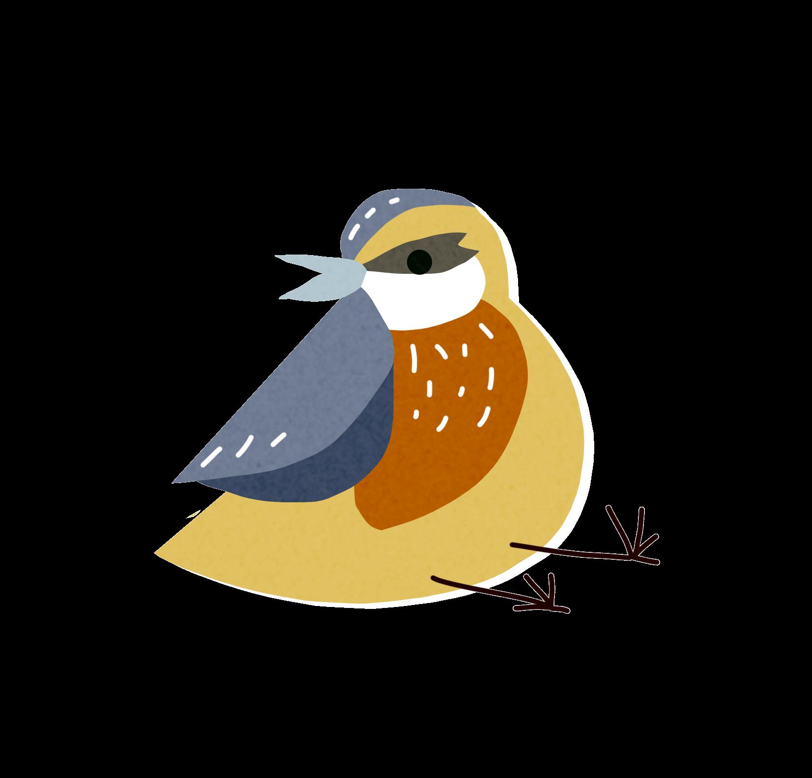 bird-5-2.png
