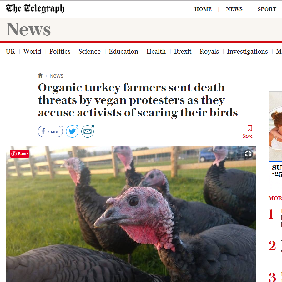telegraph_turkey_article18.png