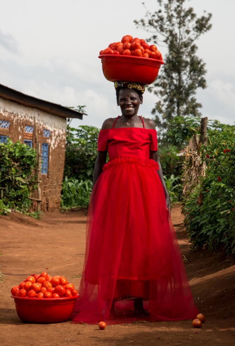 tomato web.PNG