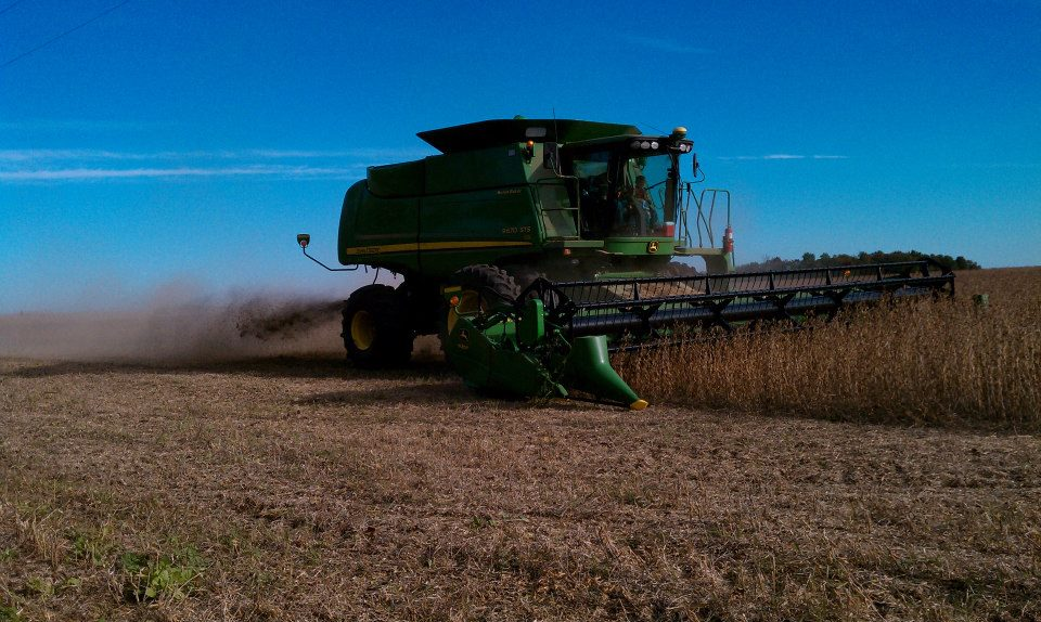 combine soybeans.jpg