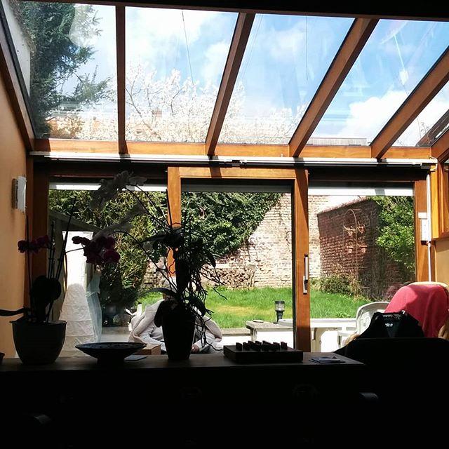 Slowly Slowly the week is starting... . . . . . . #sun #spring #belgium #travel #latonaproject