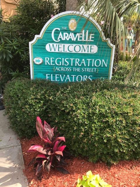 MYRTLE 2018 CARAVELLE.jpg