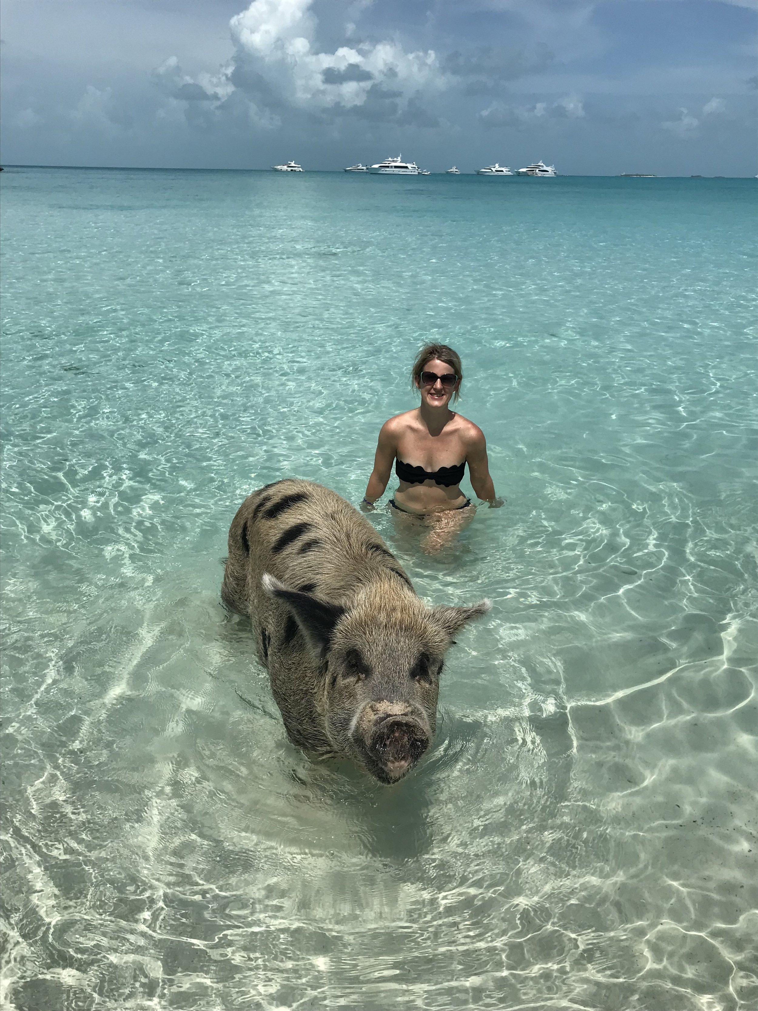 @worldwidewillett with the swimming pigs