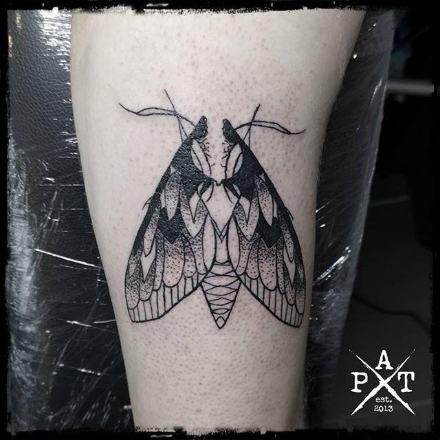 Moth Tattoo  #moth #mothtattoo #tattoo #inkbypat #worldfamousink #cheyenne_tattooequipment #craftcartridges #munich #münchen #germany #tattooed