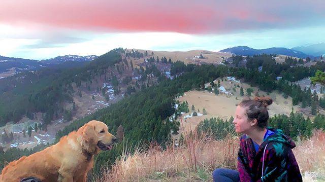 Sunrise hike with my buddy 🍀 • • • 📸 @rebeca.zanderlopez  #goldenretriever #mountains