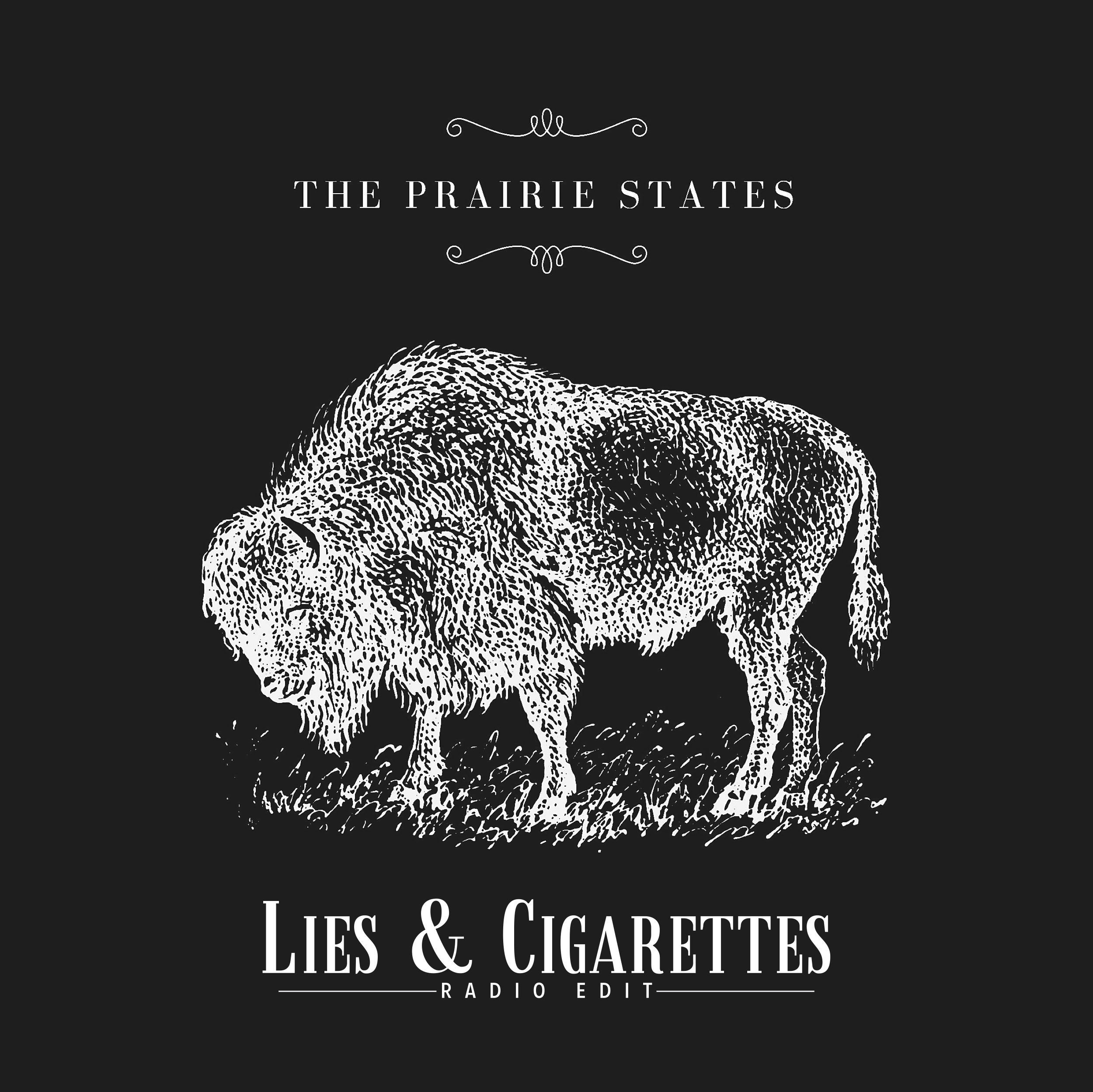 Lies and Cigarrettes - radio edit cover.jpg