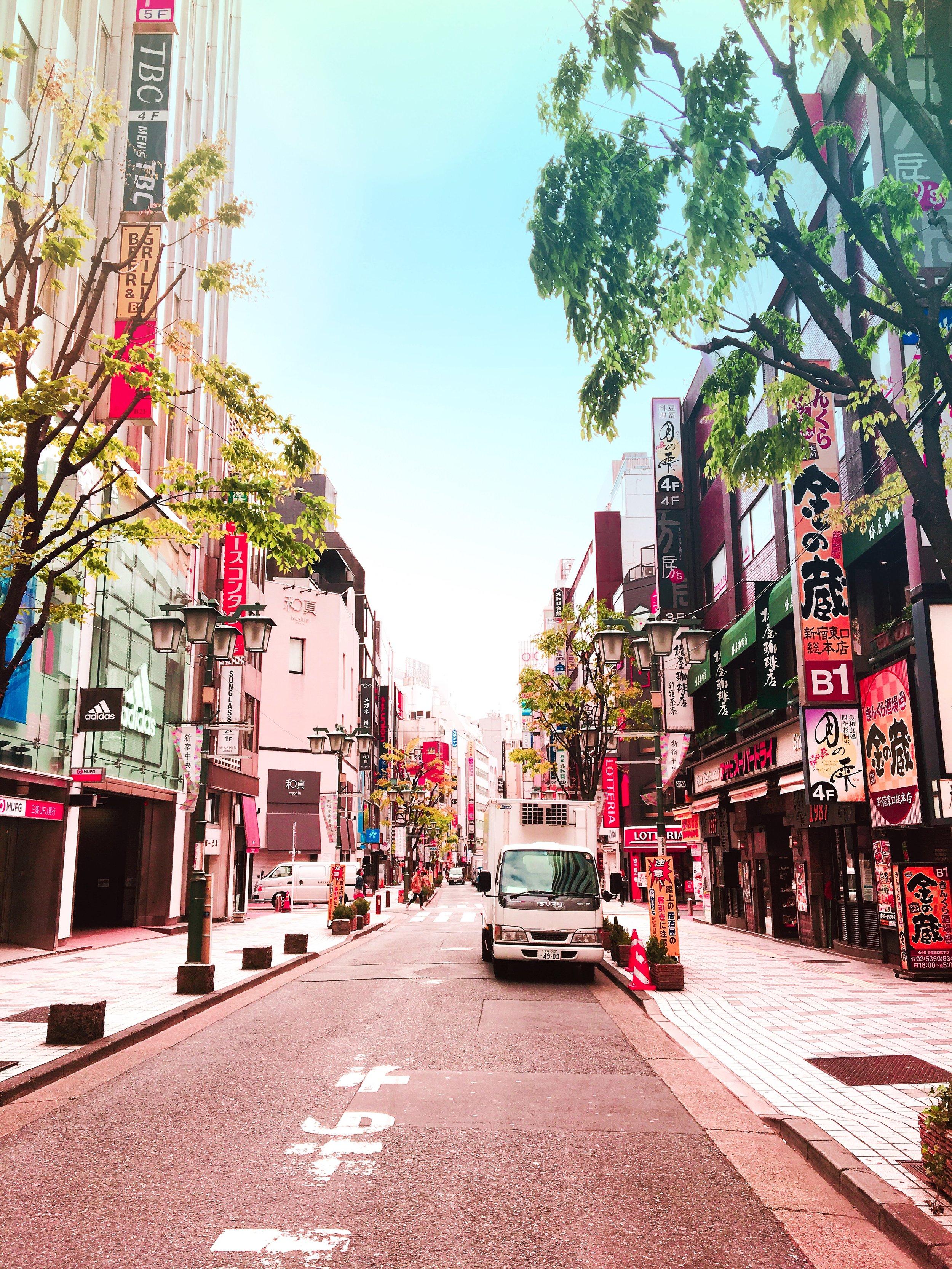 THE FUNKY FRESH / JAPAN TOKYO STREETS
