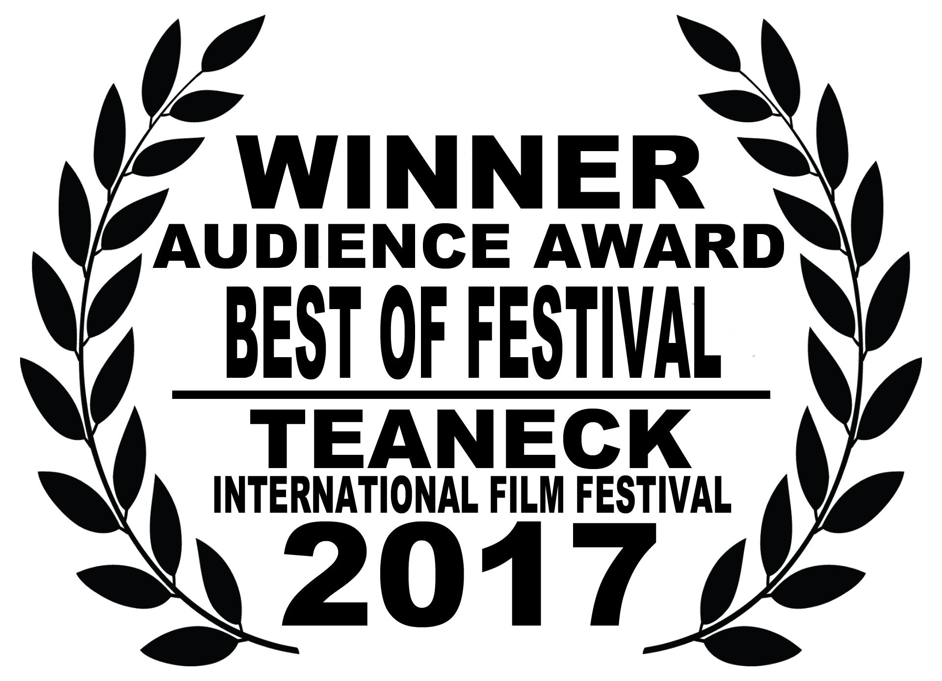 TEANECK 2017 Audience - FESTIVAL.jpg