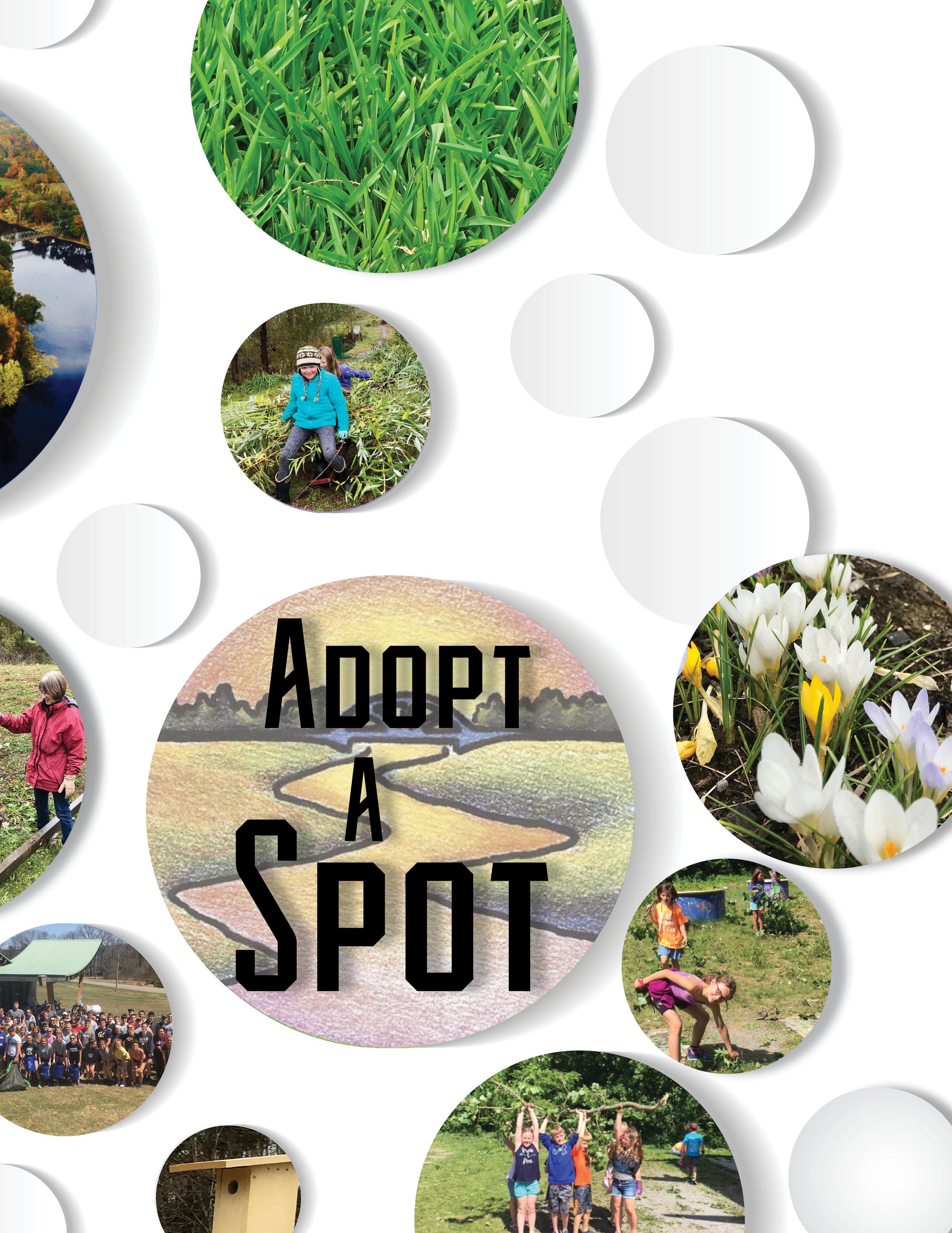 adopt a spot web.jpg