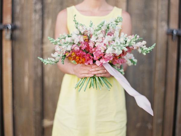 dahlia-snapdragon-flower-guide-11.jpg