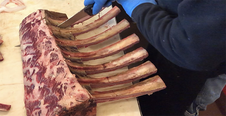 Now Jimmy slices between two bones. The entire tomahawk goes to the midpoint of the next two bones.